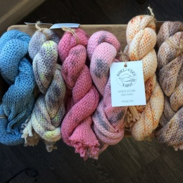 Moel View Yarn DS Sock Blank 1