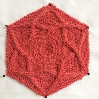 Pleione Hexagon